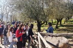 Isis Filangieri in visita a Melagrana 5