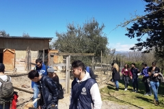 Isis Filangieri in visita a Melagrana 6