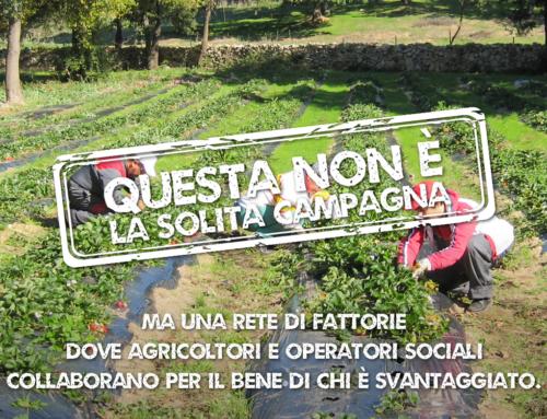 Costituito il Coordinamento della Rete delle Fattorie Sociali in Campania
